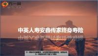 中英人寿安鑫传家终身寿险产品特色形态责任市场定位利益23页.ppt