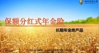 恒安标准恒爱睿赢恒爱年年尊享版产品五要素特色案例18页.pptx