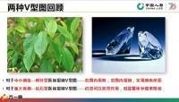 国寿六步成福销售逻辑回顾保额话术现场实操列名单30页.pptx