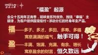 合众福盈一生年金保险分红型尊享钻账户养老年金保险万能型35页.pptx