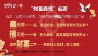 合众财富鑫禧保险计划庆典版产品特色责任10页.pptx