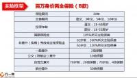 人保寿百万身价B款产品组合基础知识19页.pptx
