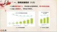 新春增员之微商发展面面观四大人群特征动摇点11页.pptx