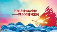 五指法销售年金险PESOS辅导及配套资料一张纸.zip
