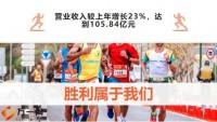 中英人寿2019年报简介13页.pptx