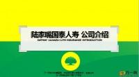 陆家嘴国泰公司经营发展企业特色泰服务体系31页.pptx