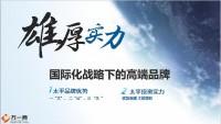 民族保险品牌太平91周年全景介绍50页.pptx
