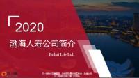2020版渤海人寿公司简介8页.pptx