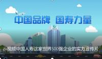 视频中国人寿这家世界500强企业的实力宣传片.rar