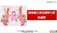 国寿福之常见病种介绍乳腺癌18页.pptx