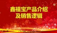 国寿银保鑫禧宝产品介绍及销售逻辑13页.pptx