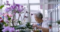 视频泰康人寿长寿时代全方位公司宣传片.rar
