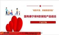 国寿康宁保B款保险产品组合宣导版13页.pptx