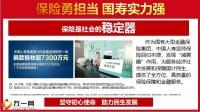 国寿忠诚客户积分兑豪礼31页.pptx