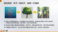 种子大树运营基础知识重要环节选择21页.pptx