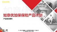 民生如意优加保保险产品计划绿通服务案例演示新增流程31页.pptx