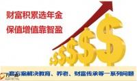 华泰智盈亮点优势卖点15页.pptx
