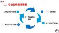 团险专业化销售流程五步法课程回顾梳理31页.pptx
