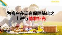 民生如意优加保保险产品计划绿通服务案例演示新增流程32页.pptx