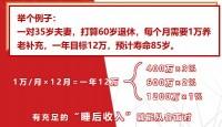 太平洋鑫从容庆典版产说会篇44页.pptx