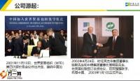 中英人寿公司介绍服务文化37页.pptx