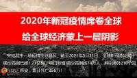 贵宾专属权益发布主讲课件华夏福临门吉祥如意版45页.pptx