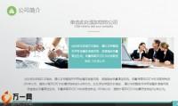 阳光人寿智能化客户价值创造系统介绍21页.pptx