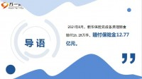 新华保险2021年8月十大赔案13页.ppt