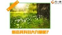 心态培训塑造阳光心态51页.ppt